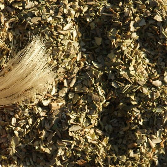 Origanum vulgare, Oregano, gefärbte Haare