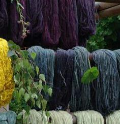Färben von Wolle und Seide mit Pflanzenfarben