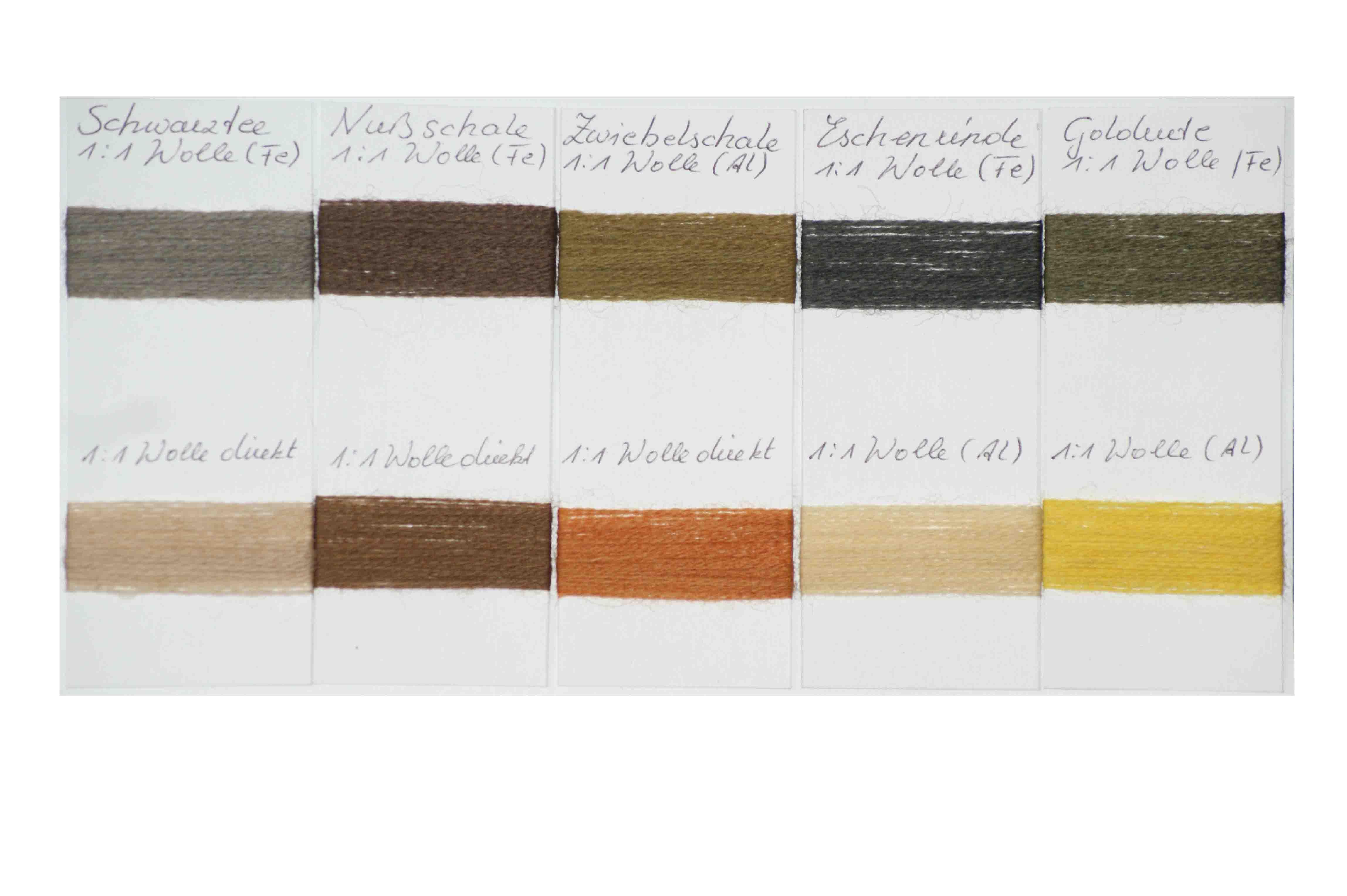 Farbmusterkarte Pflanzenfarben natürlich gefärbt auf Wolle vorgebeizt mit Alaun und Eisen