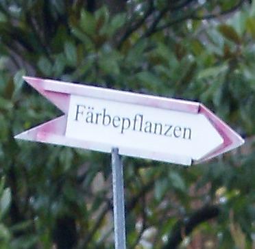 Färbepflanzen im Botanischen Garten Zürich