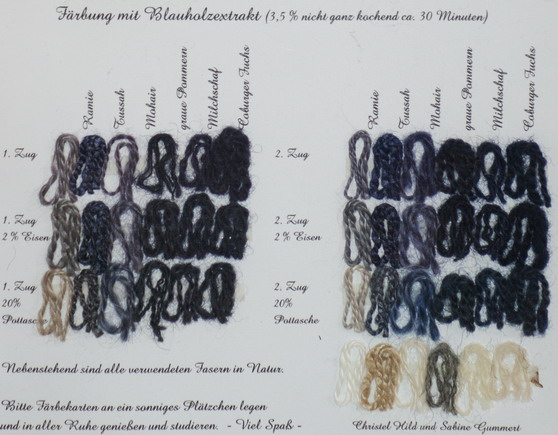Pflanzenfärbung mit Blauholzextrakt auf Ramie, Tussahseide, Mohairwolle, Wolle vom grauen Pommernschaf, Milchschafwolle, Wolle vom Coburger Fuchs-Schaf