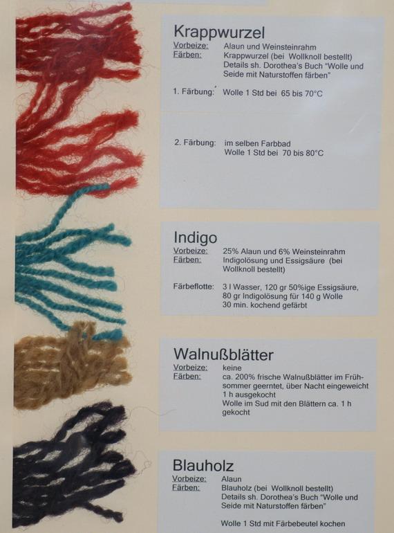 Färbung auf Wolle vom Milchschaf mit Krapp (Rubia tinctorum), Indigo (Indigofera tinctoria), Walnuss (Juglnas regia), Blauholz (Haematoxylum campechianum)